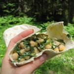 Tortilje s čičeriko in divjo zelenjavo.