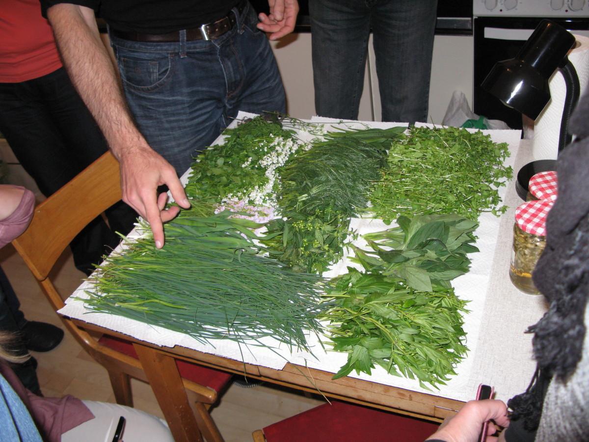 Luka je čudovito razporedil rastline.