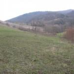 Pogled proti Kozjanskim gozdovom
