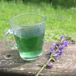 Zanimiva barva čaja iz travniške kadulje.