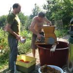 Tale mlinček je za grozdje ni hotel zmleti malih plodov jerebike.